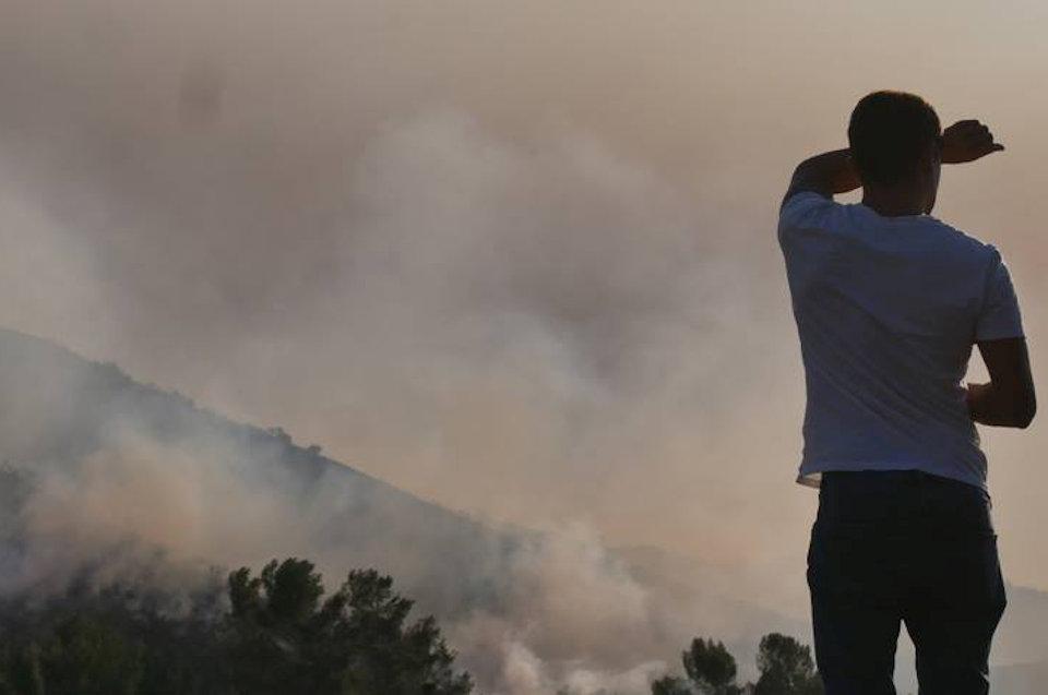 Man susrveying fire