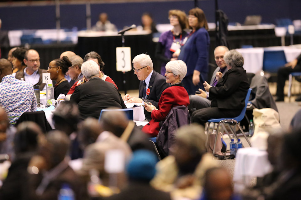 Michigan delegates on the plenary floor of General Conference 2019