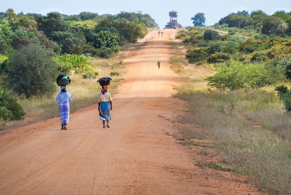 African women walking with food