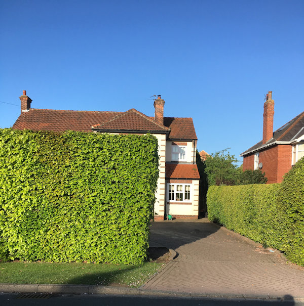 Hedges define the space between English houses.