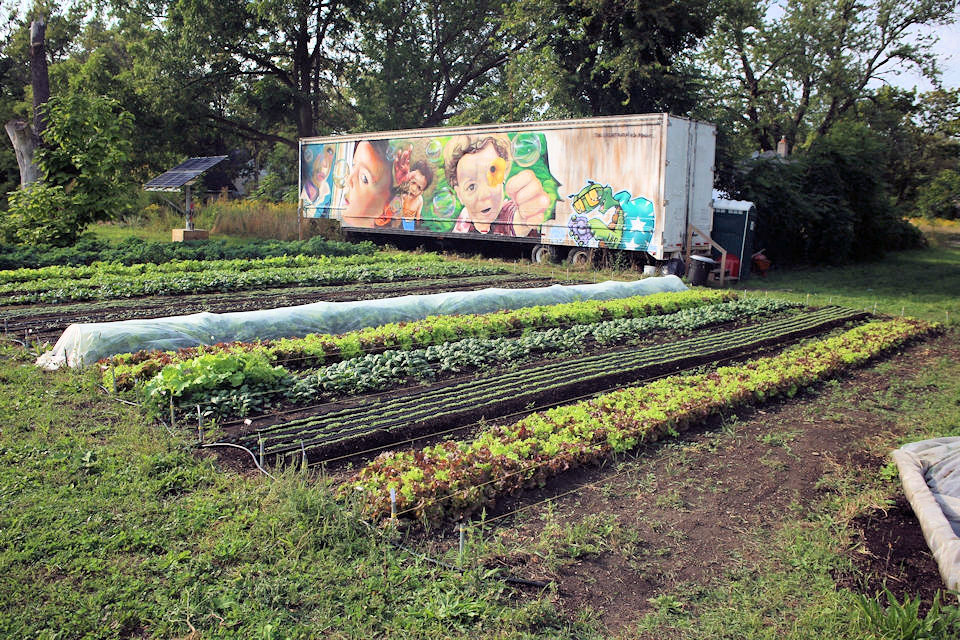 Asbury Farms grows healthy food.