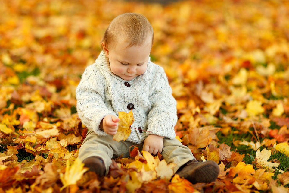 Small child in leaves