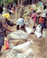 Despite turmoil Birmingham 1st in Haiti