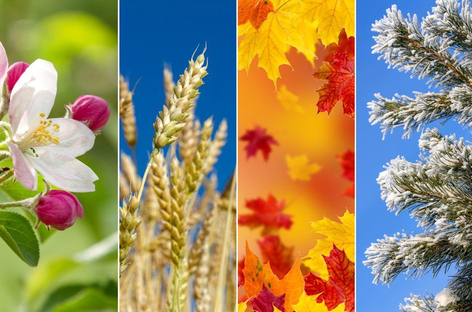 Retreats address seasons of the soul