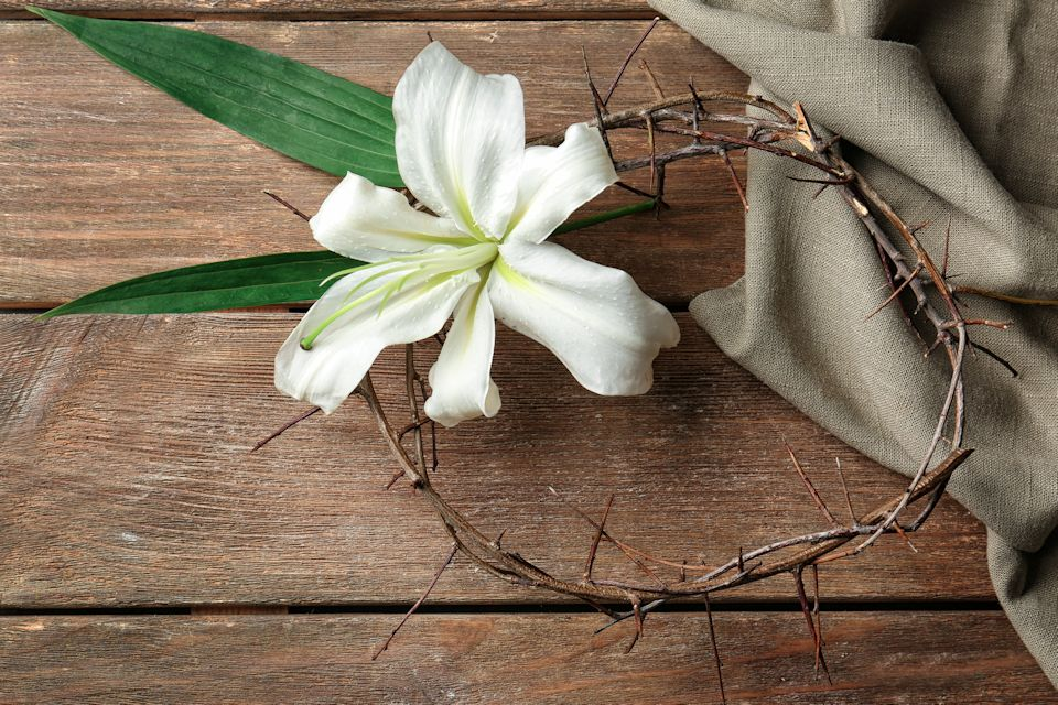 Holy Week Lily and Thorns
