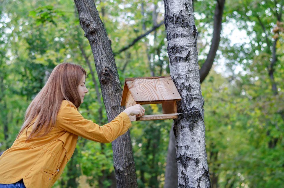 Love the earth by feeding birds