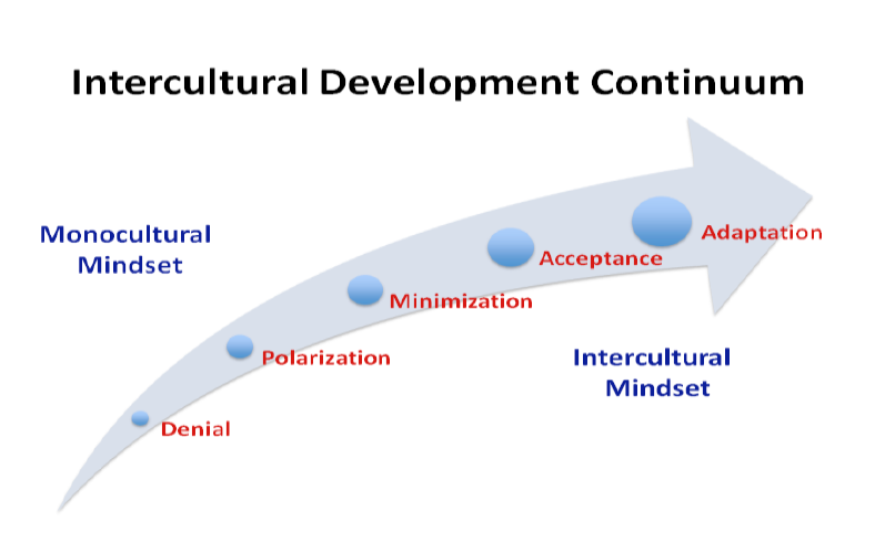 IDI, Continuum, Development, Monocultural, Intercultural