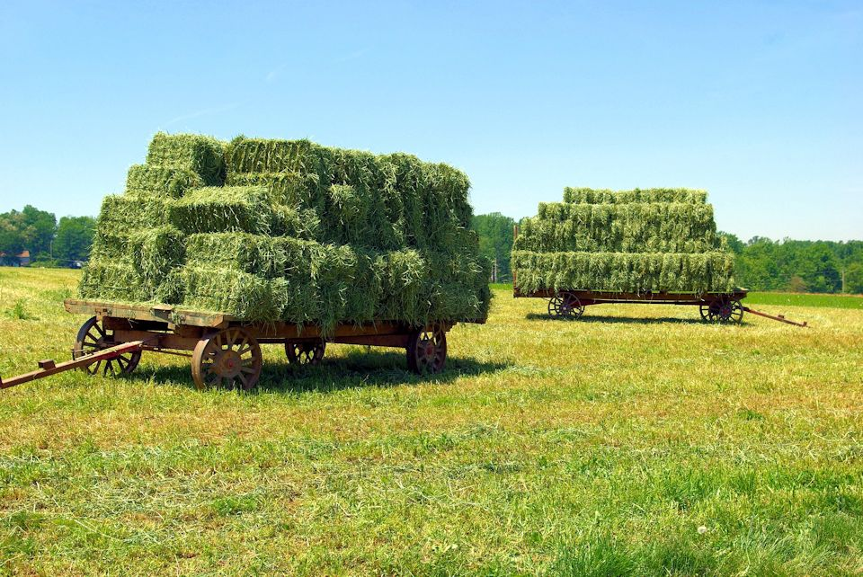 A knot on each hay bale in the wagon