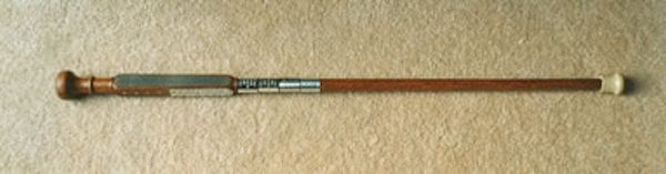 The Detroit Conference Cane