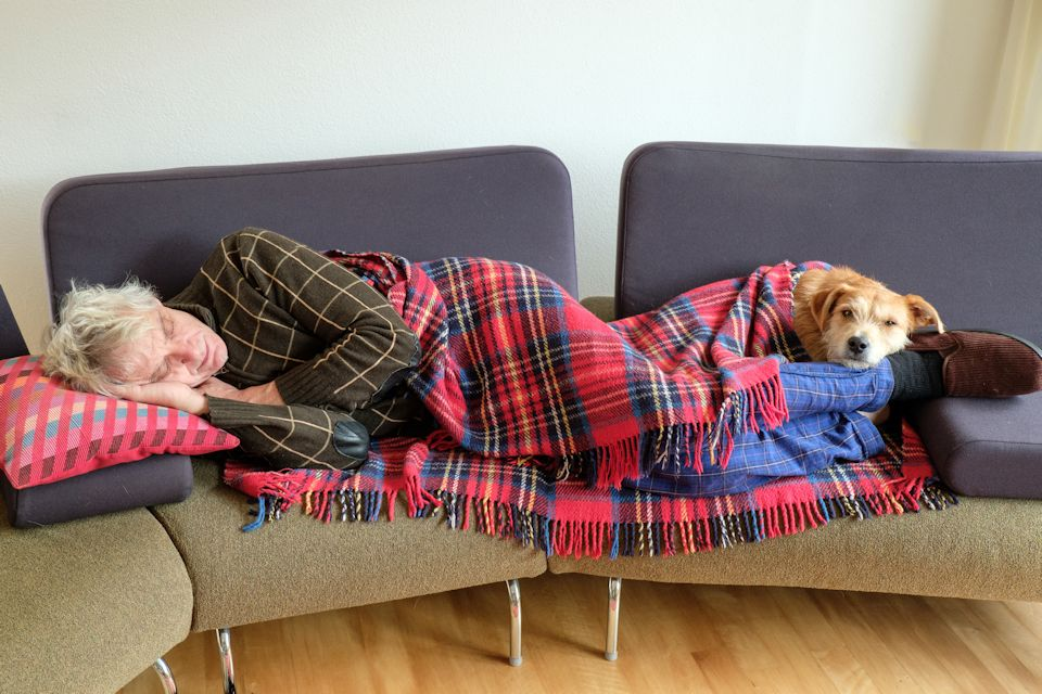 Man and dog get rest