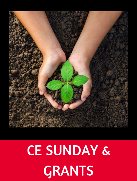 Toolbox CE Sunday Logo