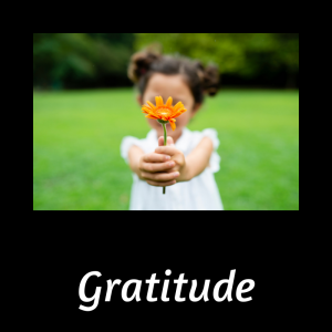 Gratitude Playlist