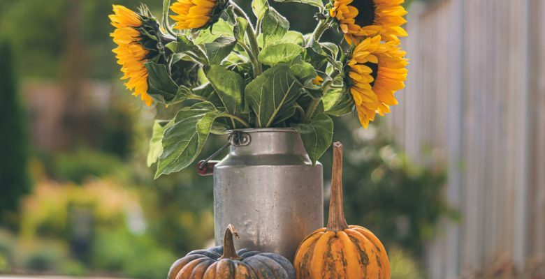 link to 15 Thanksgiving Prayers and Table Graces