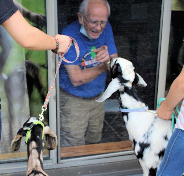 Seniors receive window visits