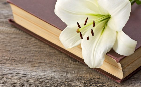 White lily on the book on the old wooden background