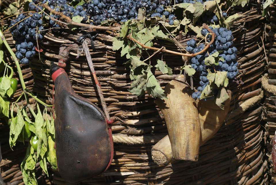 Grapes for wine that needs new wineskins